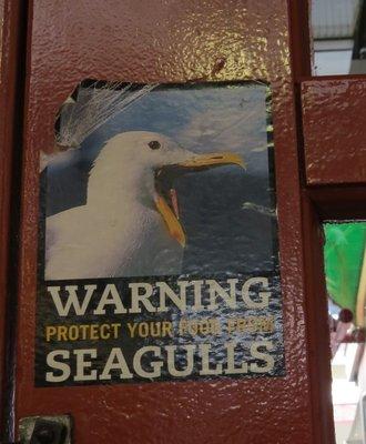 <3 Seagulls