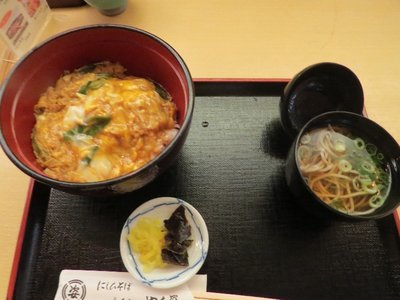 Tamago Donburi (bowl of rice with scrambled egg and spring onion).