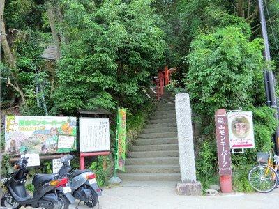 Arashiyama Monkey Park!