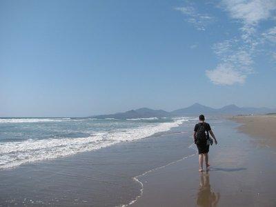 Beach at La Sarena