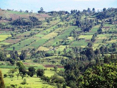 Western hill country of Kenya - rural landscape