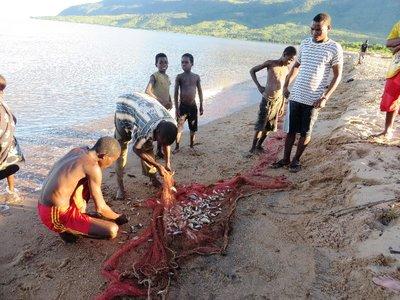 Fishermen view their small catch, Lake Malawi
