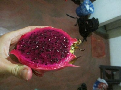 Dragon fruit - very magenta