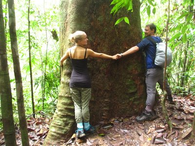 Hugging the biggest tree in Sri Lanka