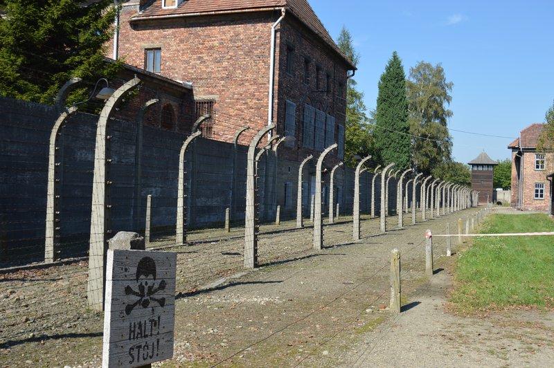 large_Auschwitz_I__11_.jpg