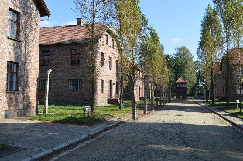 large_Auschwitz_I__4_.jpg