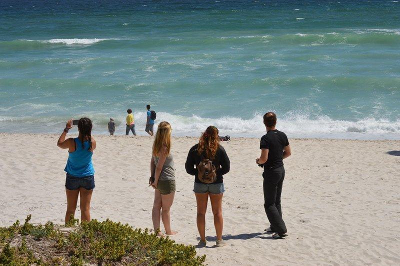 large_Beach__4_.jpg