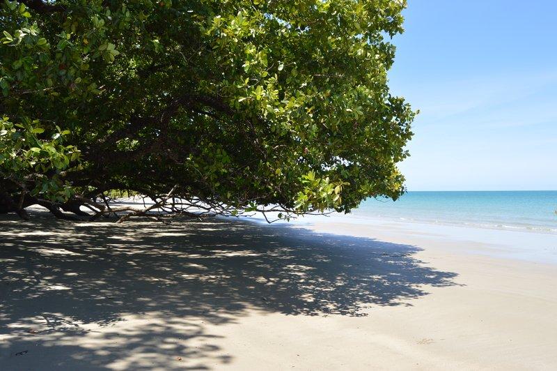 large_Cairns2__10_.jpg