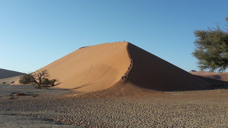 large_Dunes__1_.jpg
