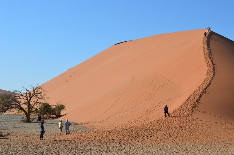 large_Dunes__21_.jpg