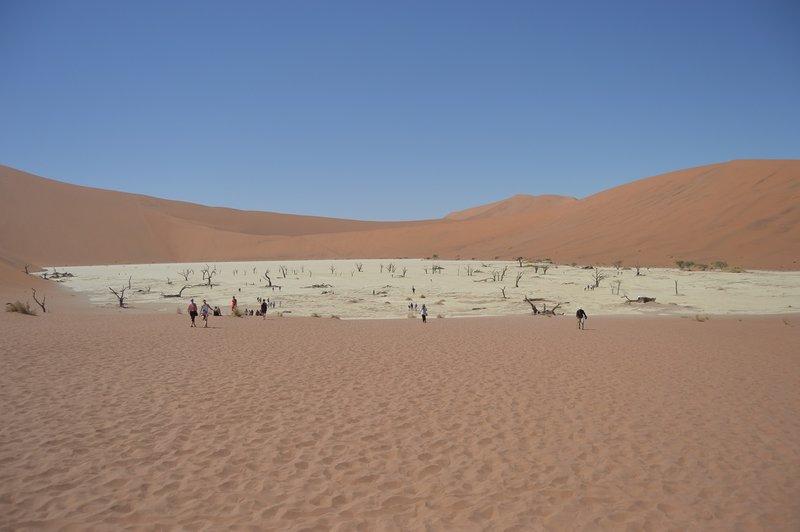 large_Dunes__25_.jpg