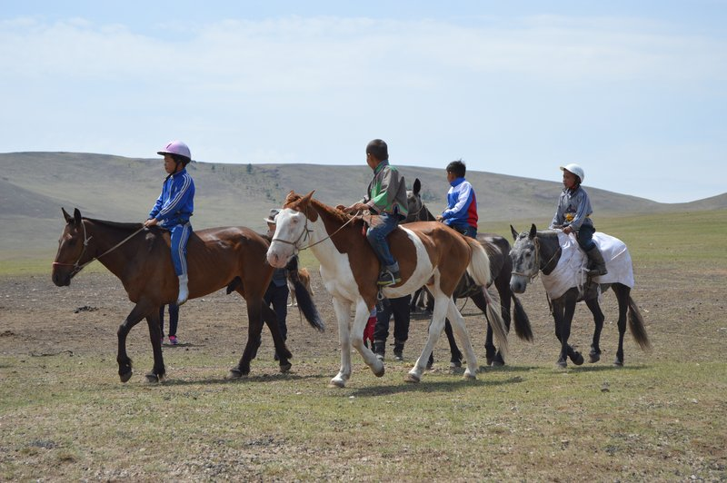large_Horse_Camp__15_.jpg
