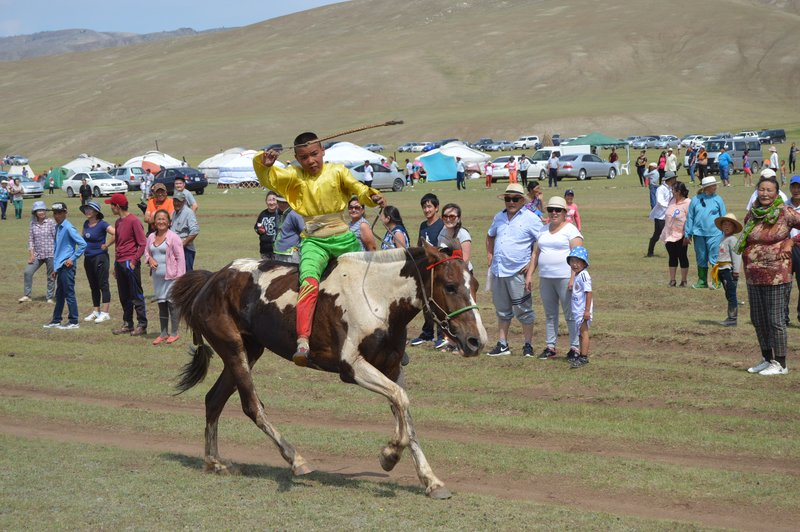 large_Horse_Camp__17_.jpg