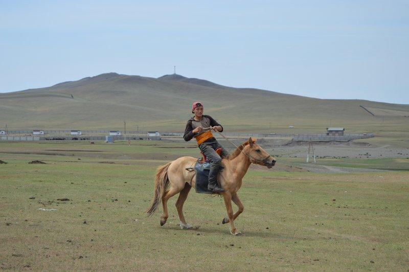 large_Horse_Camp__7_.jpg
