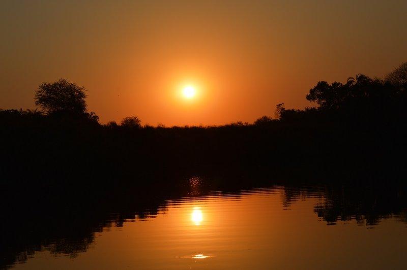 large_Okavango1__10_.jpg