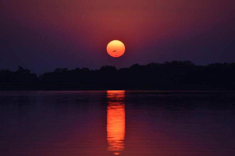 large_Okavango1__13_.jpg