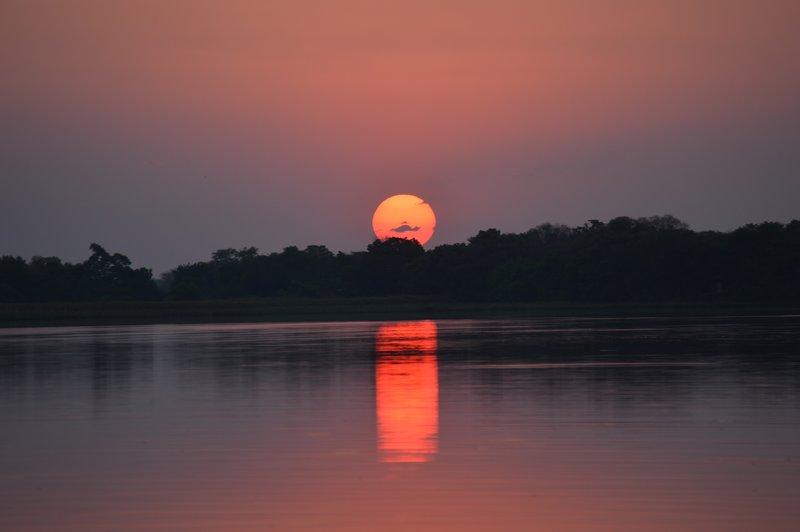 large_Okavango1__14_.jpg