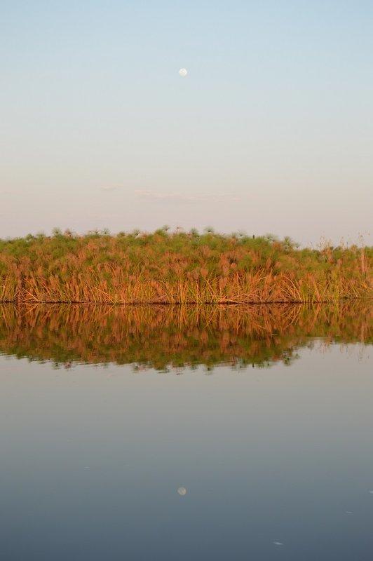 large_Okavango1__9_.jpg
