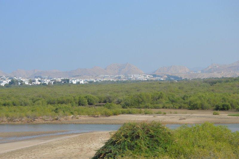 large_Oman__16_.jpg