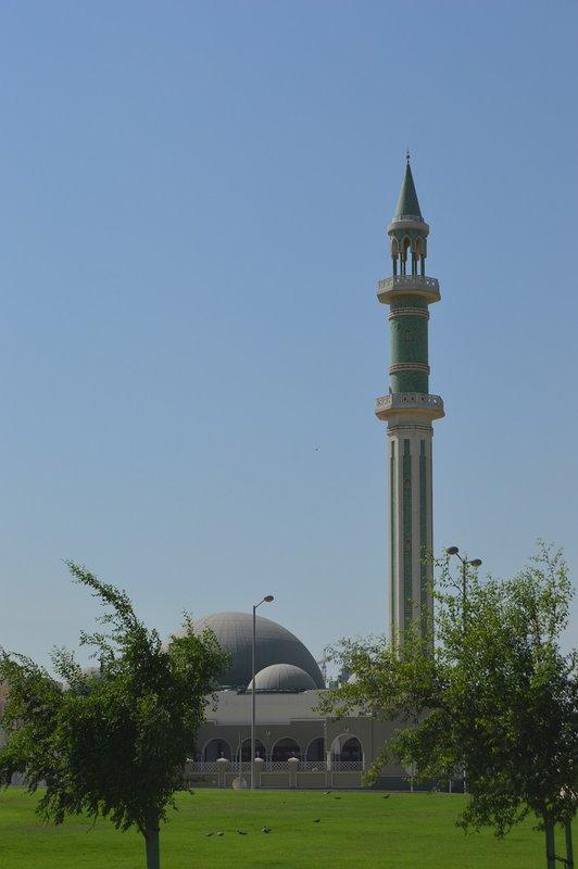 large_Qatar__17_.jpg