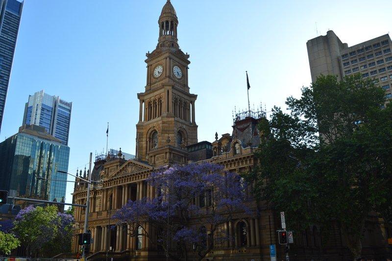 large_Sydney_02__29_.jpg