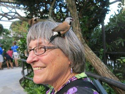 Cheryl in the small bird aviary