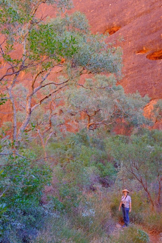 John has got the colours right! Uluru