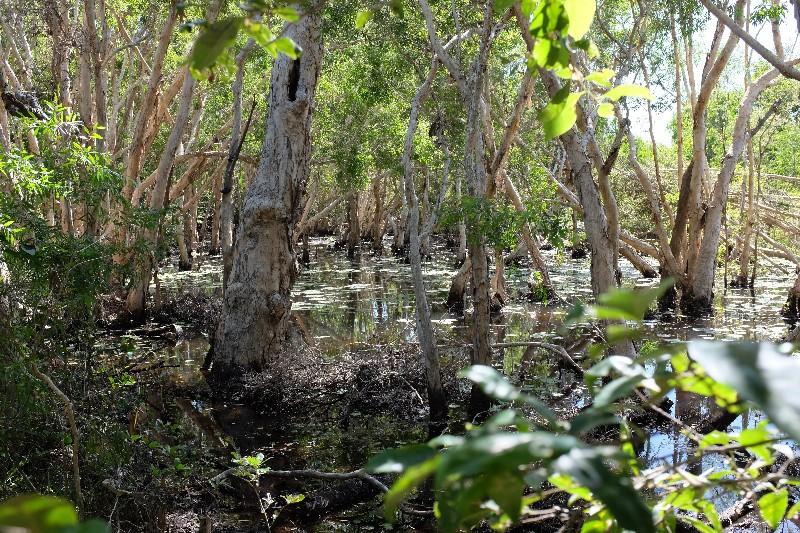 Keating's Lagoon