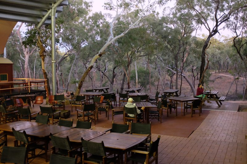 Dining on the edge of the bush