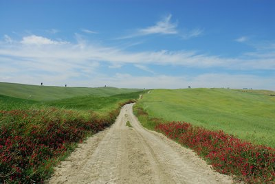 Dirt road in Tuscany