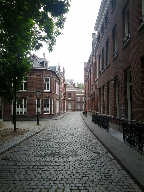 Near Sint Jans Kathedraal