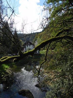 Pont_au_Saut_du_Doubs_1.jpg
