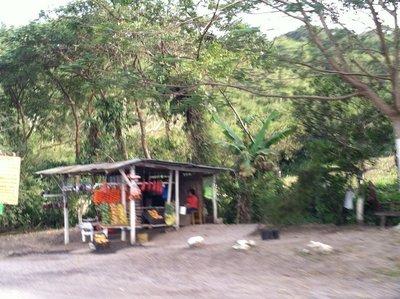 Vc_roadside_stand.jpg