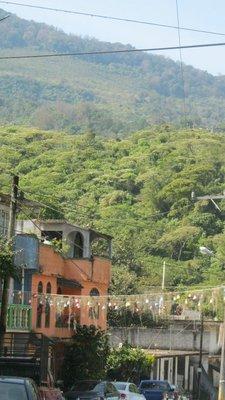 Xilitla mountain