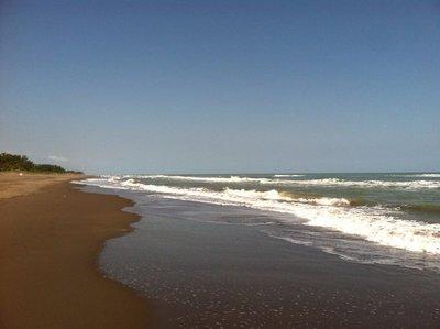 tobago waves