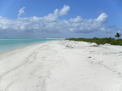 Oeno and Sandy Island
