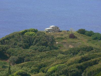 Pitcairn_Islands_242.jpg