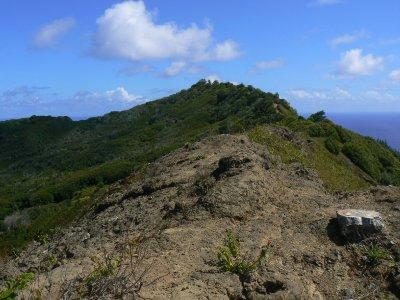 Pitcairn_Islands_325.jpg
