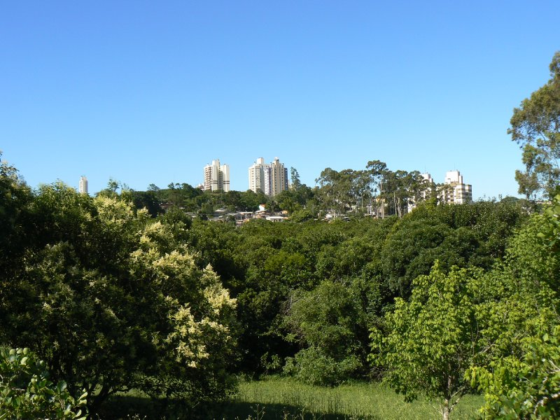The skyline of Porto Alegre