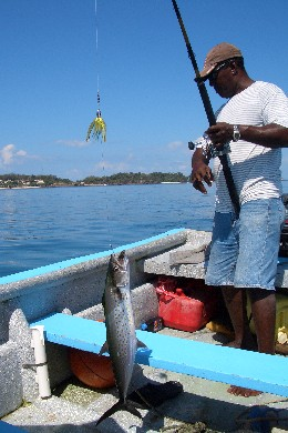 Isla Contadora - Fishing