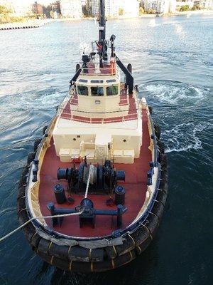Tug Boat Sydney Harbour