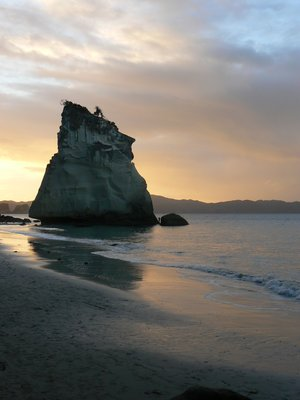 Cathedral Cove in the Coromandel Peninsula