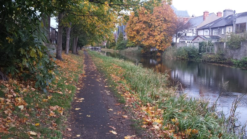 Walk along the Canal
