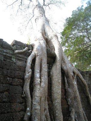 2015-03-03 Angkor Wat 065