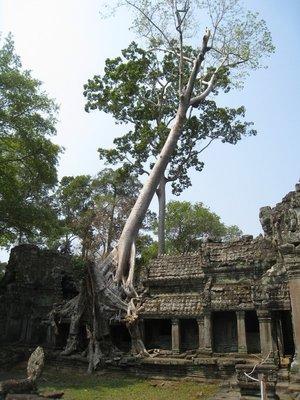 2015-03-03 Angkor Wat 069