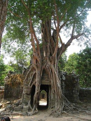 2015-03-03 Angkor Wat 079