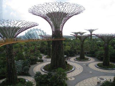 2015-03-10 Singapour 060