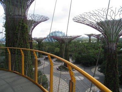 2015-03-10 Singapour 063