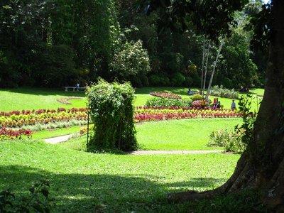 2015-04-14 Kandy - Peradeniya botanical garden 037