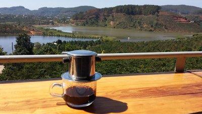 Café digéré par des belettes